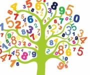 الحوار في حصة الرياضيات